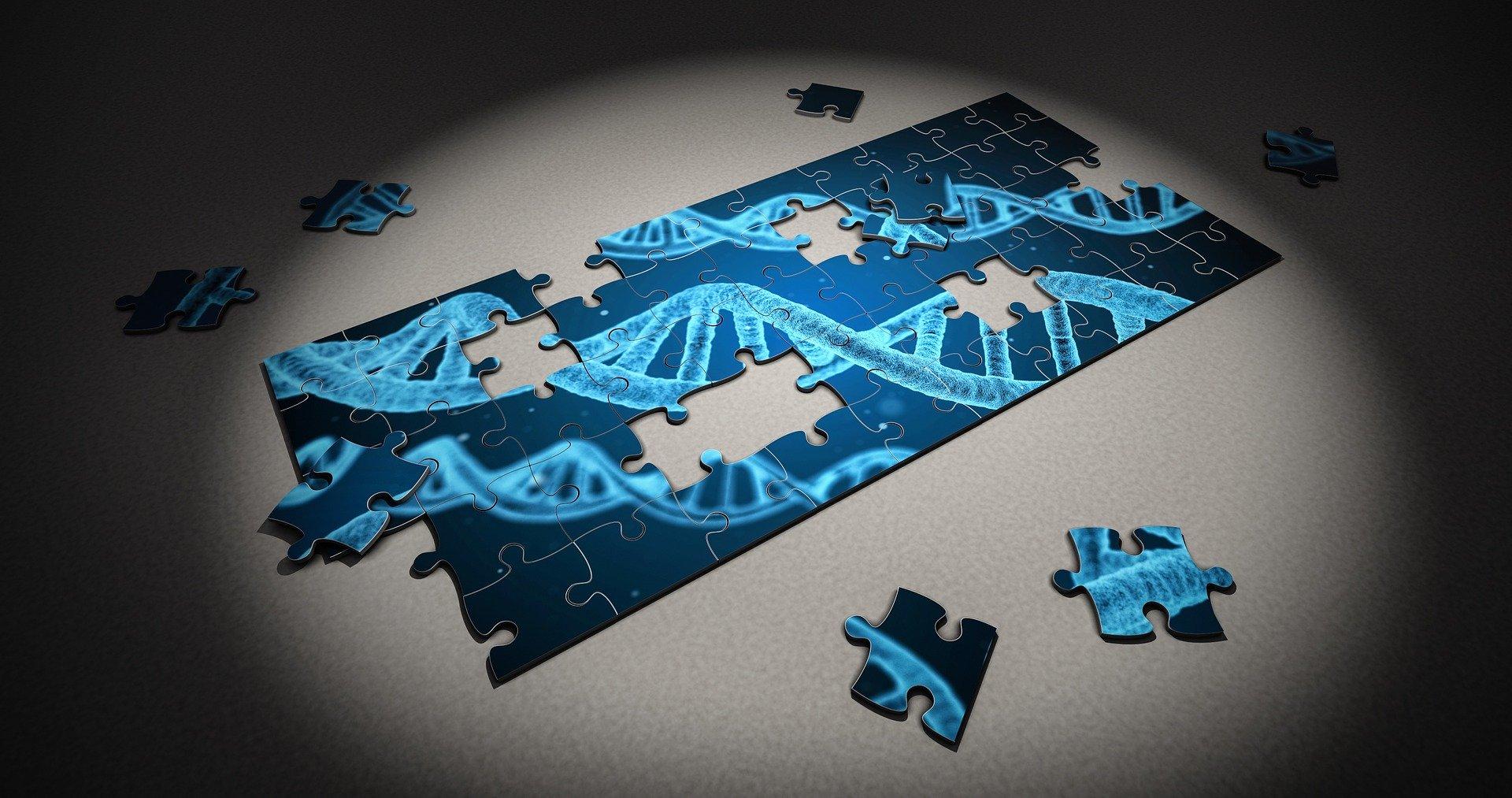 Obesitas en de genen: onderbelicht of overschat?